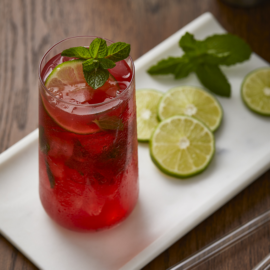 Blueberry Pomegranate Mojito