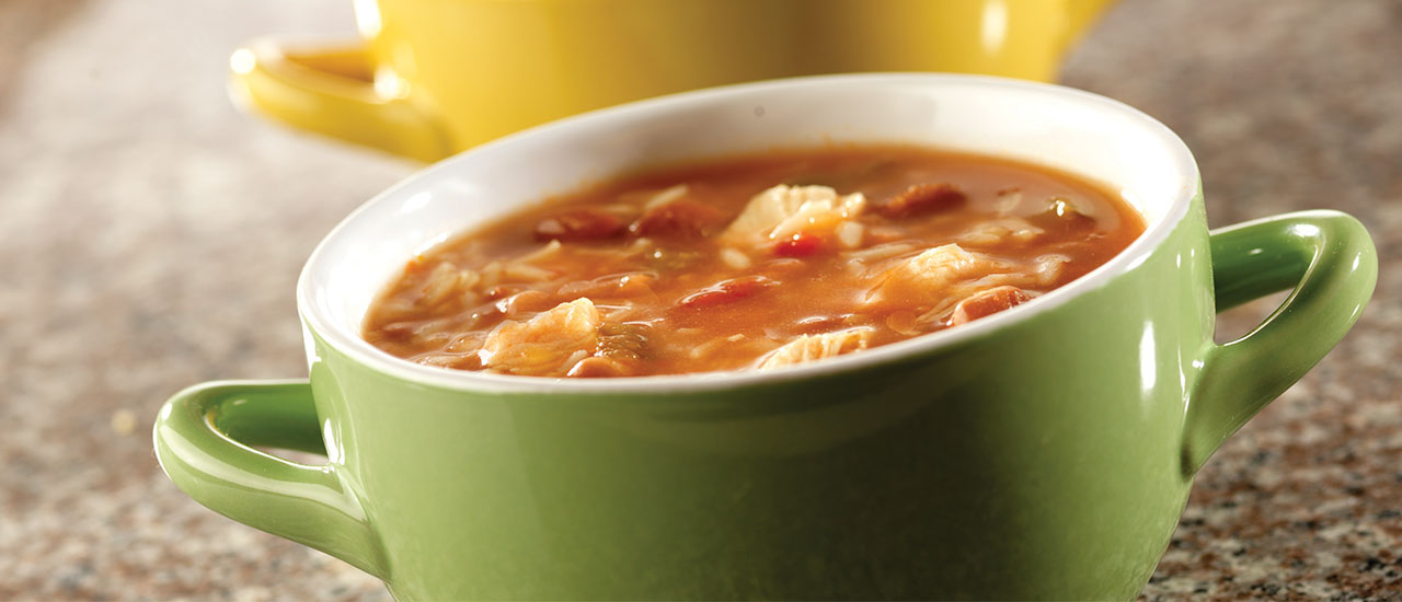 Salsa Chicken Soup