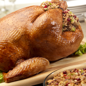 Turkey with Cranberry Pecan Stuffing